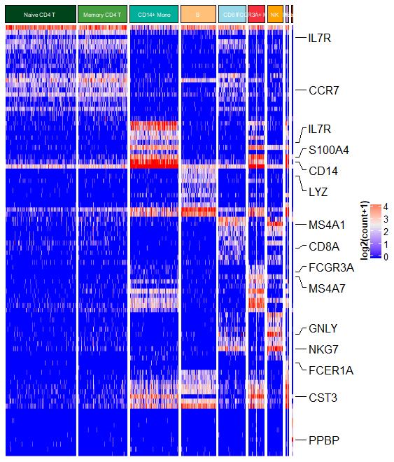 「热图」ComplexHeatmap展示单细胞聚类