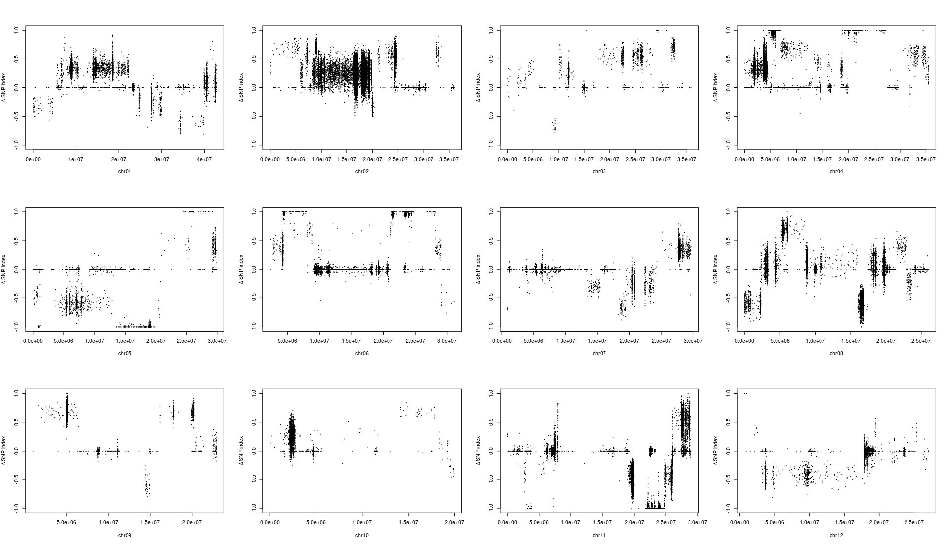 snp index-2