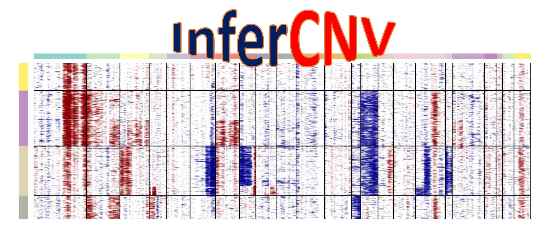 使用inferCNV分析单细胞转录组中拷贝数变异