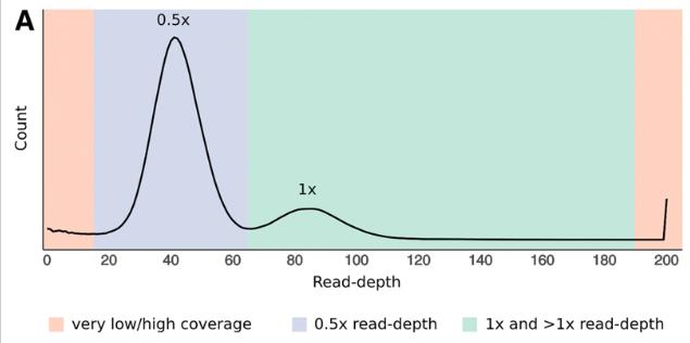 read-深度分析