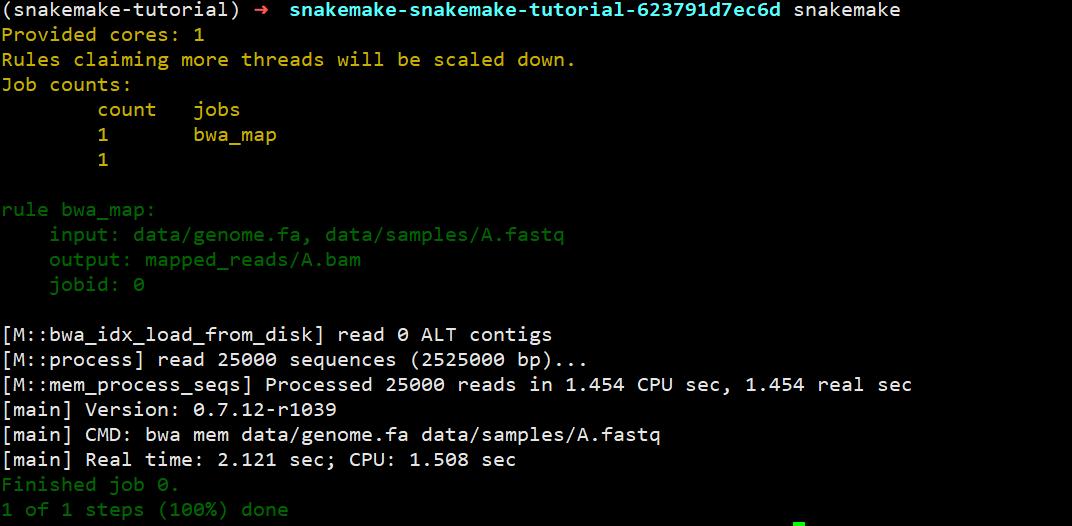 run snakemake