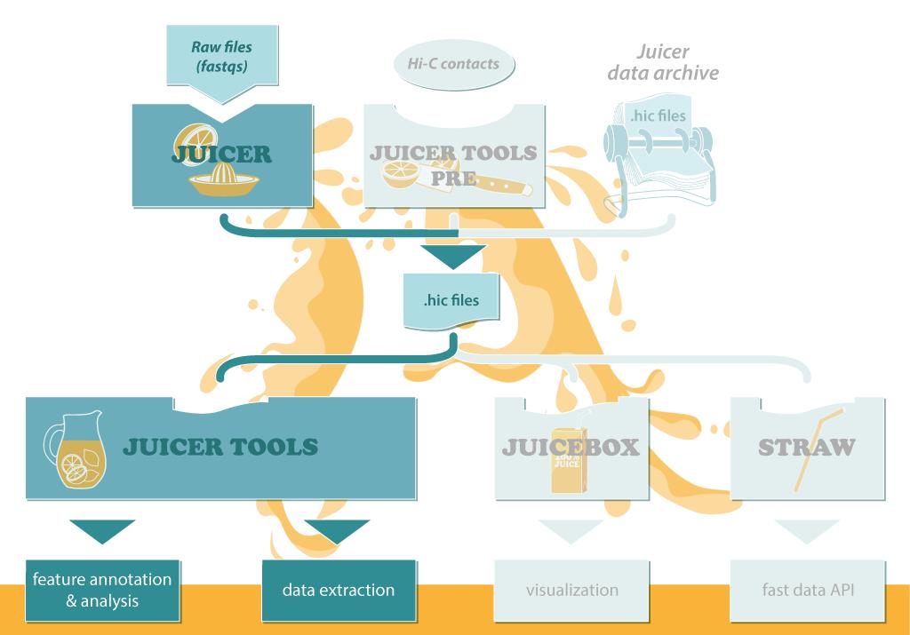 juicer工作流程