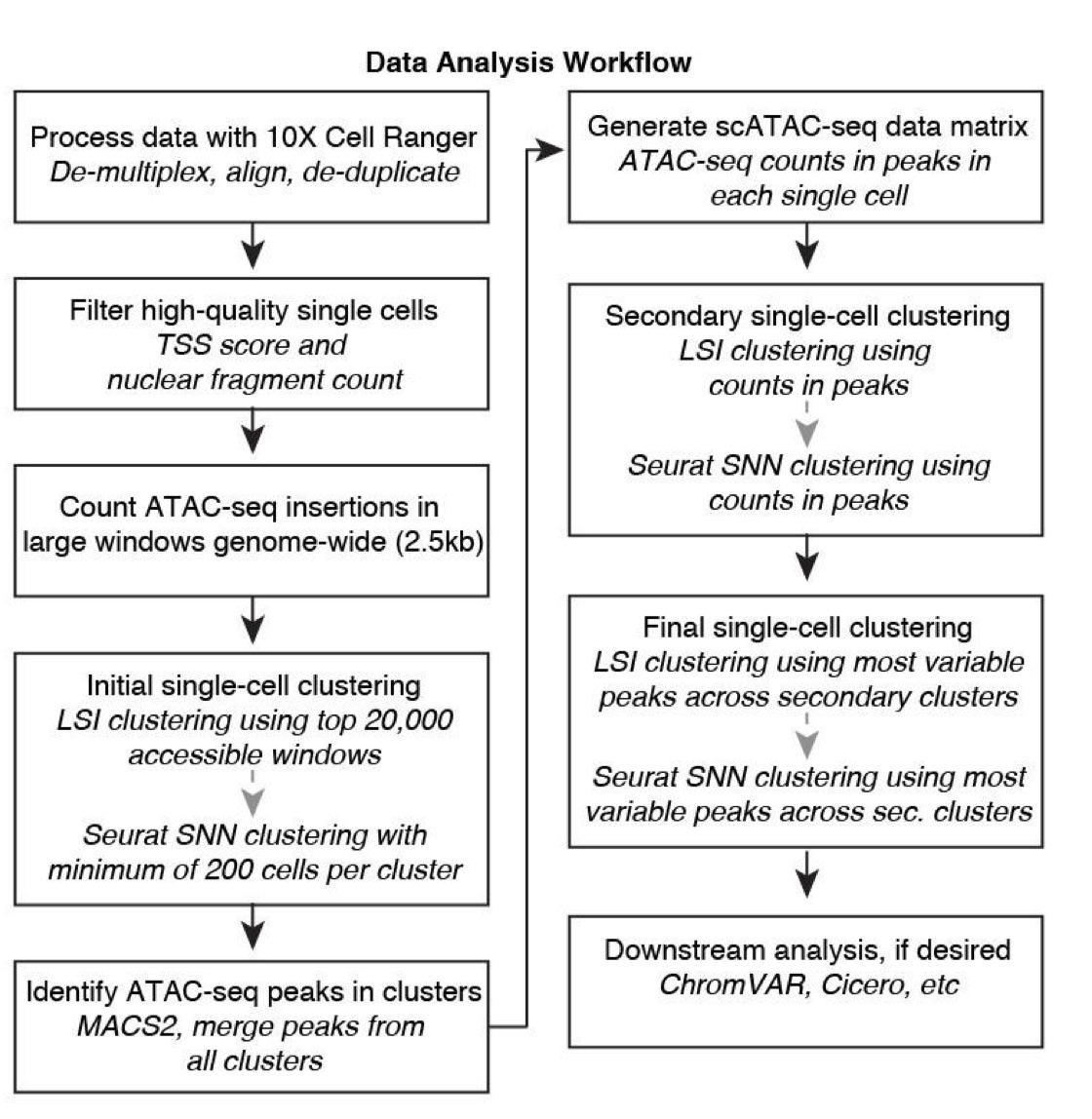 sc-ATAC-seq-analysis-flow