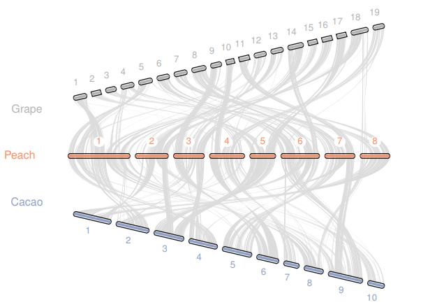 「JCVI教程」使用JCVI进行基因组共线性分析(中)