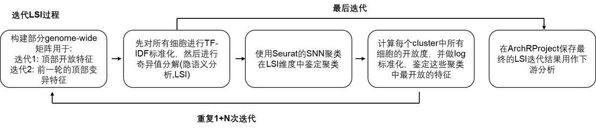 LSI过程