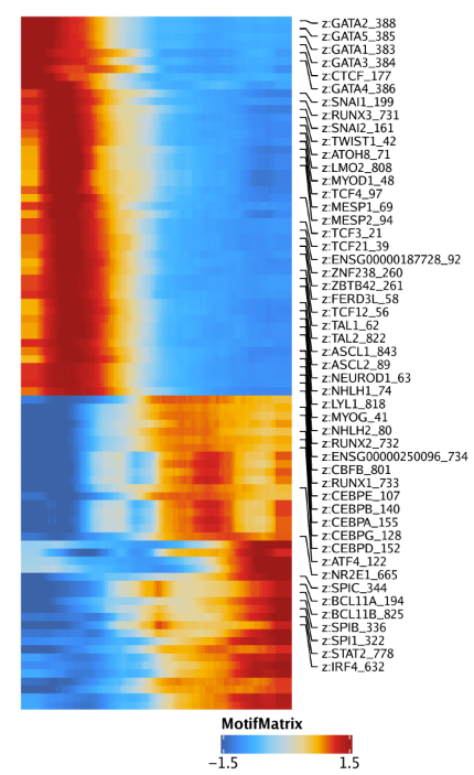Plot-MyeloidU-Traj-Heatmaps