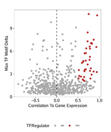 TF-Regulators-GeneExpression